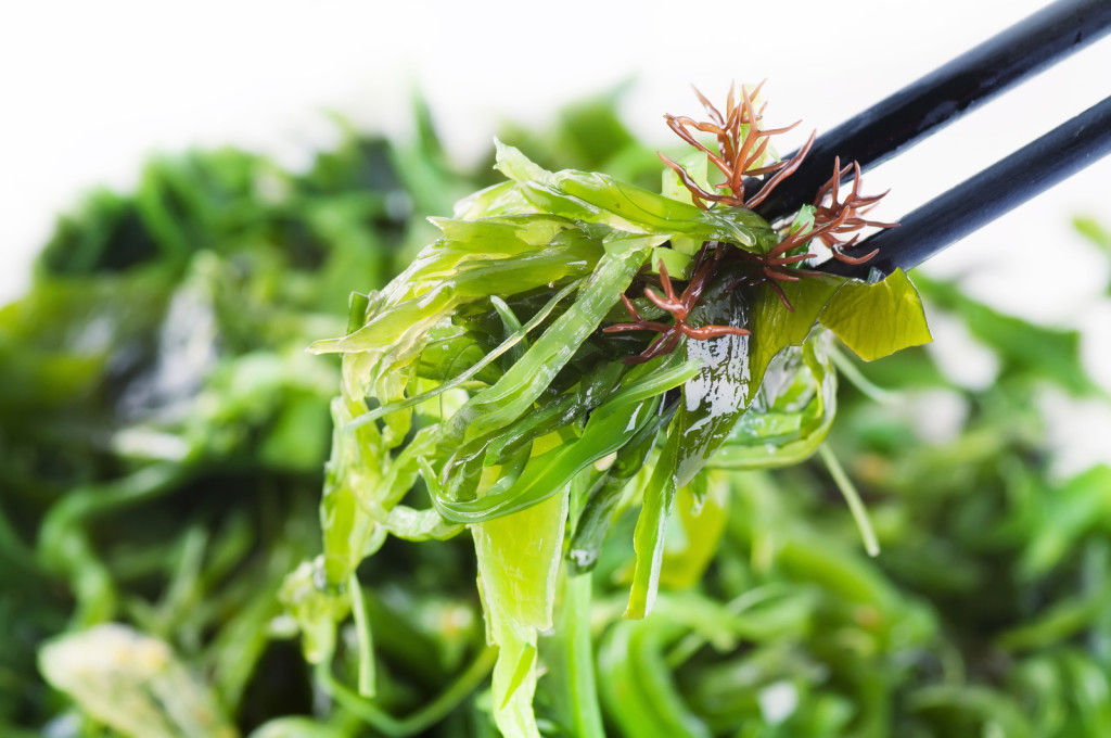 bigstock-Fresh-seaweed-salad-29411774